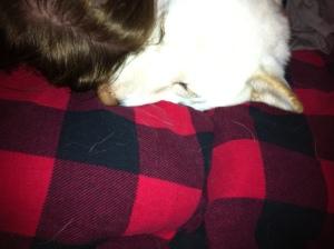 Jillian and Kuma sleeping
