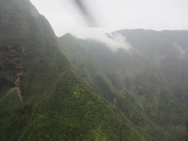 maui fog