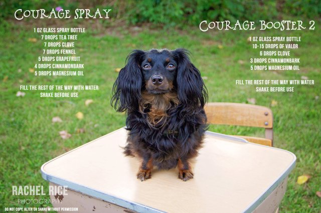 courage spray recipes